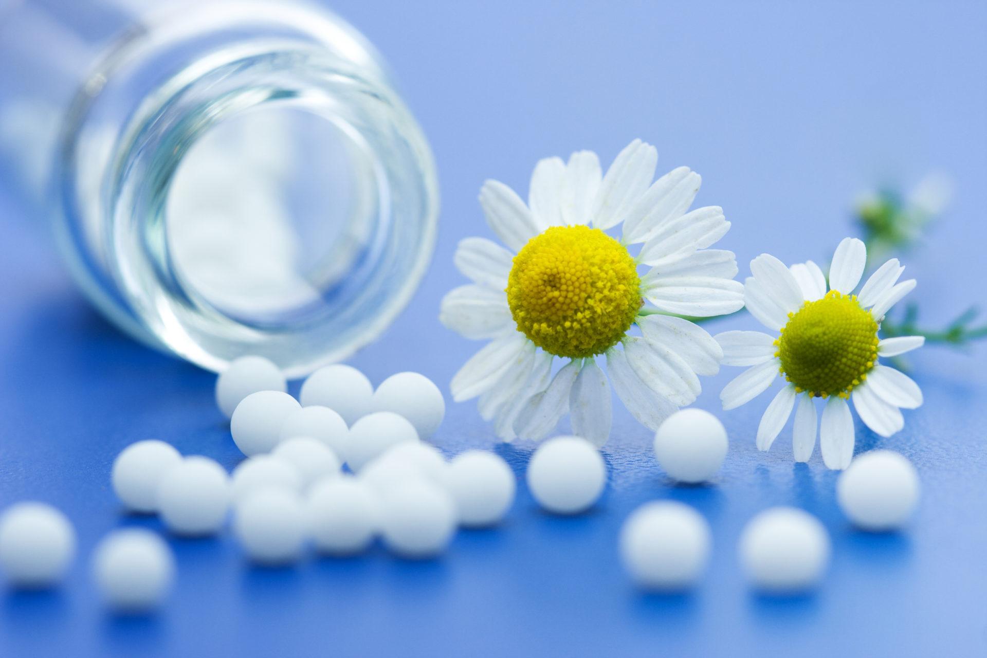 homeopathy santa rosa